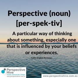 Definiton of perspective: A particular way of thinking about something, especially one that is influenced by your beliefs or experiences.